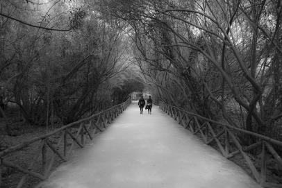 Siracusa - Parco della Neapolis