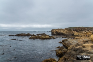 Point Lobos State Reserve (California)