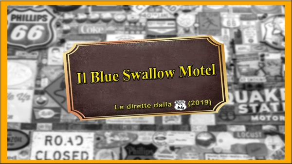Blue_Swallow_2019