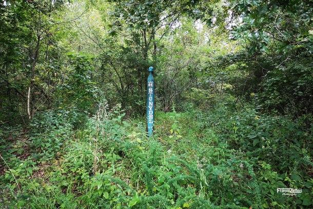 Lo Stonydel Artesian Well immerso nel bosco